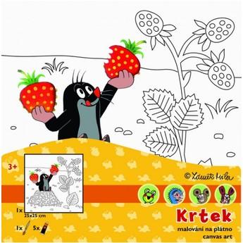 Výtvarné a kreativní hračky - Malování na plátno Krtek a jahoda