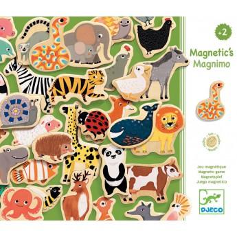 Školní potřeby - Magnety Zvířátka ze ZOO
