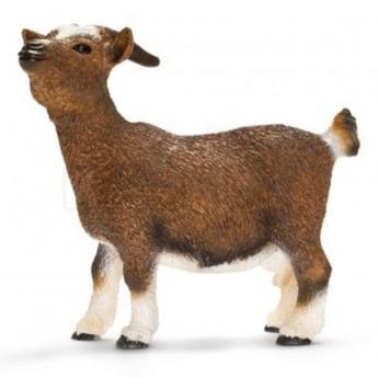 Zvířátko - koza zakrslá