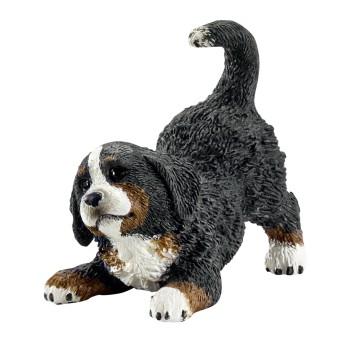 Zvířátko - Štěně Bernského salašnického psa