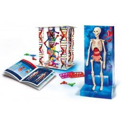 Dětská laboratoř - lidské tělo