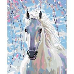 Malování podle čísel - Bílý kůň, bez rámu