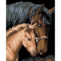 Malování podle čísel - Hnědá kobyla s hříbětem, bez rámu