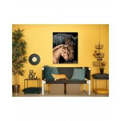 Malování podle čísel - Hnědá kobyla s hříbětem, na rámu