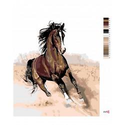 Malování podle čísel - Hnědák v písku, na rámu