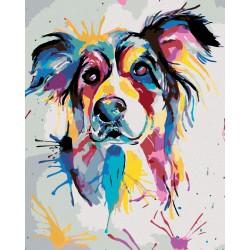 Malování podle čísel - Krásný malovaný pes, na rámu