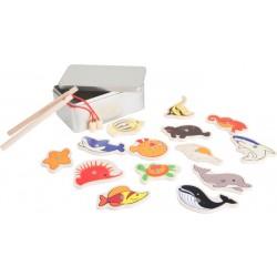 Chytání rybiček v krabičce - Mořští živočichové