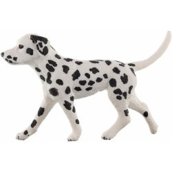 Zvířátko - dalmatin pes